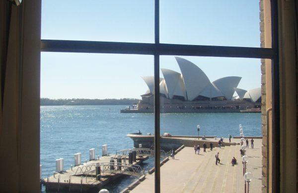 Solar Gard Quantum 20 Dockside Wolfies Restaurant internal image